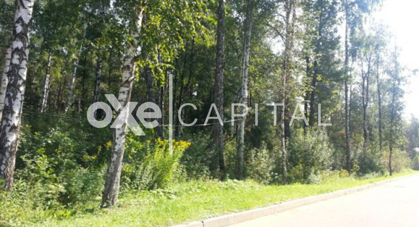 Лесной участок